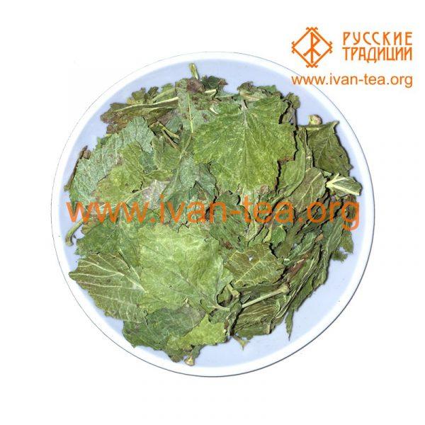 Листья смородины в крафт-пакете, 50 г